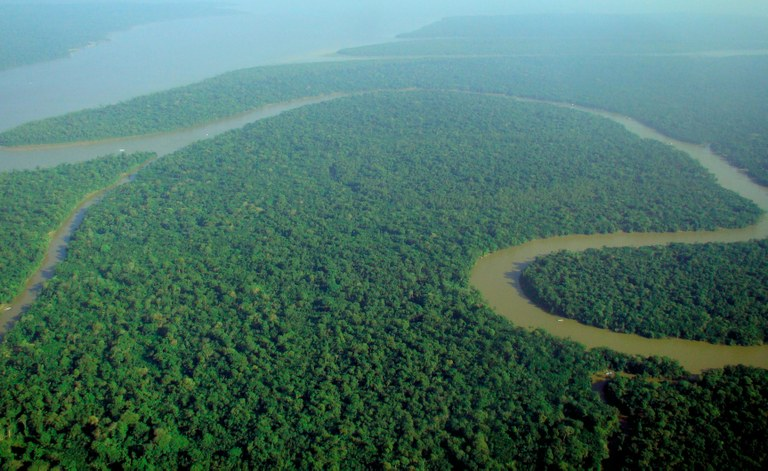 copy_of_Aerial_view_of_the_Amazon_Rainforest.jpg
